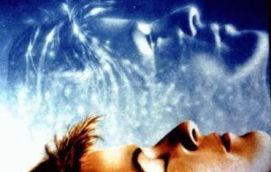 Despiertos en un Mundo Somnoliento ~ Jennifer Hoffman
